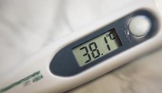 Свиной грипп добрался до жителей Приморского края
