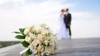 Количество заключенных браков в Уссурийске увеличилось на 7 процентов