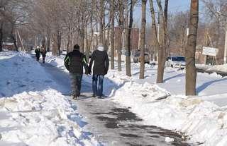 Оперативная информация по расчистке дорог и тротуаров Уссурийска на 28 января
