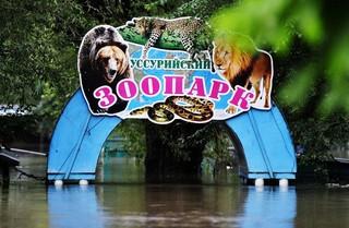 После случая с утонувшими животными в Уссурийске спасатели проверили все зоопарки в ДФО