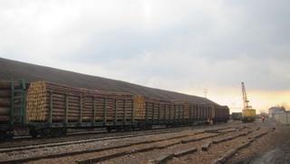 Уссурийская таможня пресекла попытку незаконного вывоза лесоматериалов в Китай