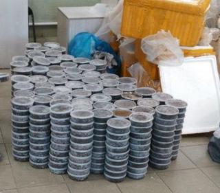 Уссурийские таможенники задержали 371 кг черной икры