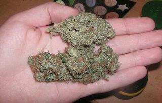 В Уссурийске сотрудники транспортной полиции изъяли у хозяина гаража табак, пропитанный гашишным маслом