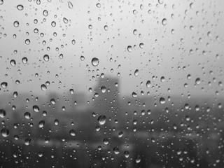 Ночной дождь и ветер не нанесли ущерба Уссурийску