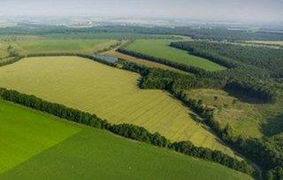 В Уссурийске все готово к предоставлению «дальневосточного гектара»