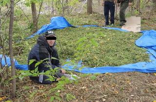 Полицейские задержали жителя Уссурийска с крупной партией марихуаны