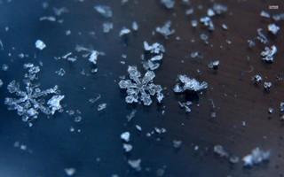 Синоптики обещают в Уссурийске снег на праздники