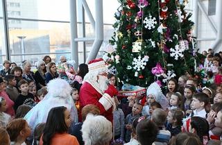 Главную новогоднюю елку Приморья посетят более 1200 детей