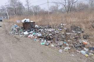 В Уссурийском городском округе организованы весенние плановые работы по санитарной очистке