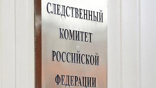 Следственный комитет закрыл дело Рины Паленковой