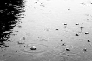 Сильный дождь не вызвал аварий и подтоплений в Уссурийске