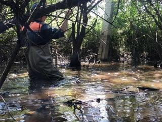 В Уссурийске спасатели Амурского спасательного центра помогают в ликвидации последствий циклона