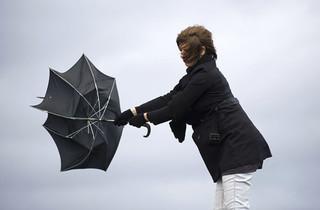 Усиление ветра до 22 метров в секунду ожидается в Уссурийске