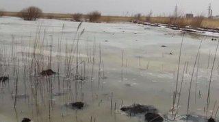 В окрестностях Уссурийска образовалось озеро из канализационных вод