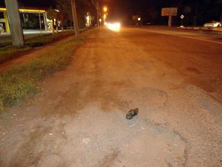 В Уссурийске водитель насмерть сбил пожилого пешехода