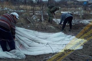 «Прилетел небесный ангел»: военный парашютист приземлился на смородину