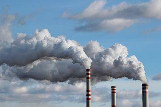 Плохая почва, грязный воздух: Приморье попало в неблагоприятный рейтинг