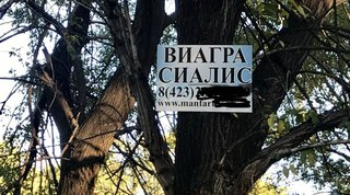Лечить мужскую эрекцию в Уссурийске предлагают прямо на деревьях