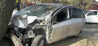 Автомобиль влетел в дерево в результате ДТП в Уссурийске