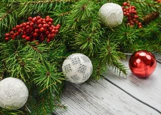 В Уссурийске ёлки начнут продавать с 20 декабря