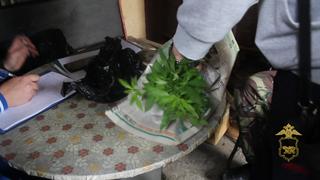 Перед судом предстанет житель Уссурийска, обвиняемый в наркопреступлениях