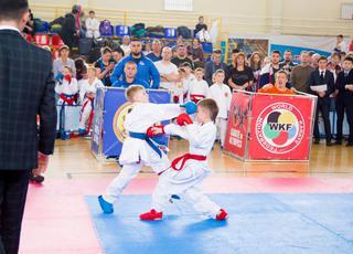 Соревнования по каратэ WKF прошли в Уссурийске