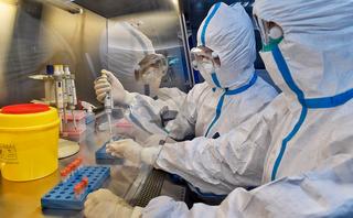 Два новых случая заболевания коронавирусом официально подтверждены в Приморье