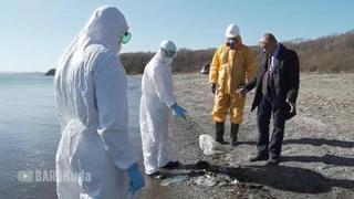 Народный депутат из Приморья решил «камчатскую» проблему