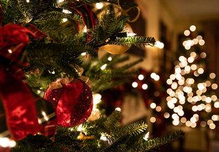 Жительница Уссурийска лишилась денежных средств, купив новогоднюю елку в социальных сетях