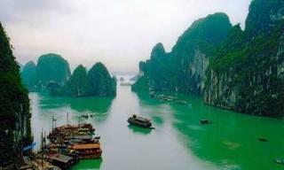 Работы приморских художников оценят во Вьетнаме
