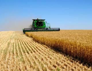 В Приморье займутся подготовкой работников аграрной отрасли