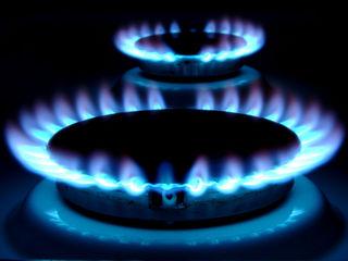 Уссурийцы, пользующиеся сжиженным газом из баллонов, могут остаться без голубого топлива